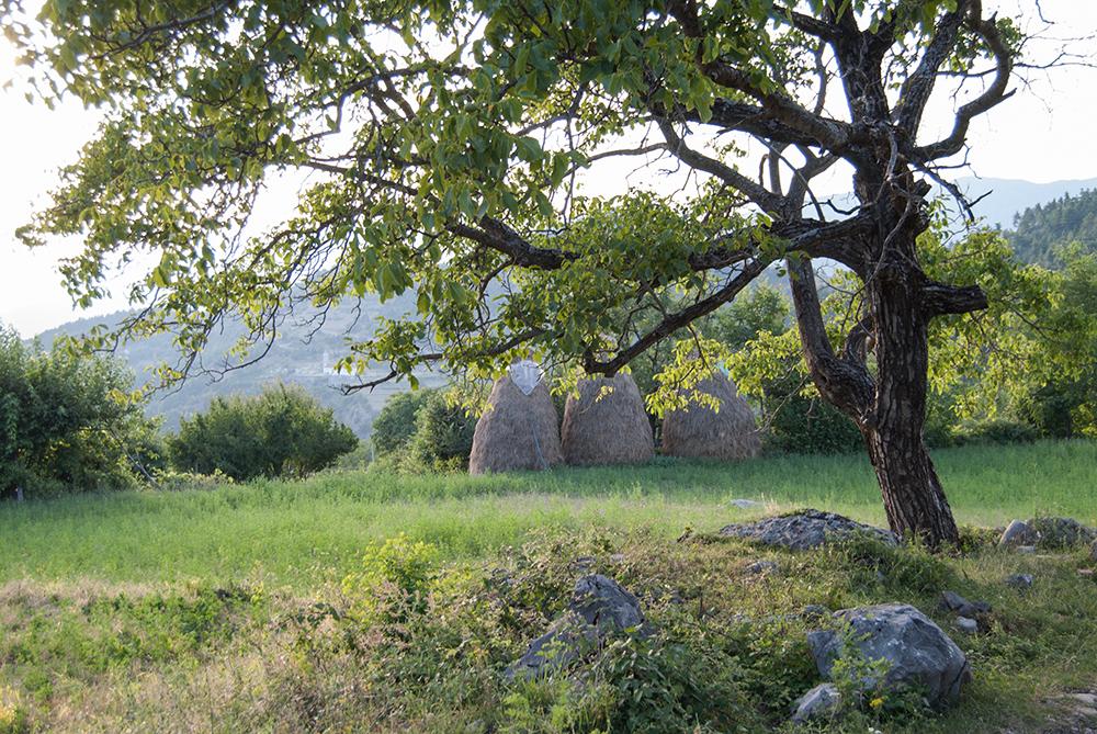 Grykë Orosh Mirditë, © alketa misja photography 2008