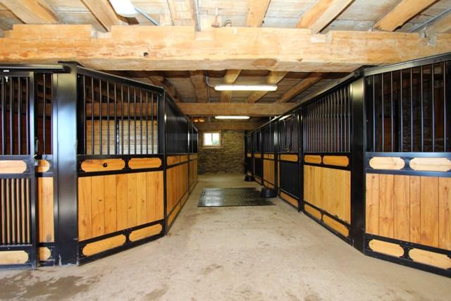 11 Stalls.jpg