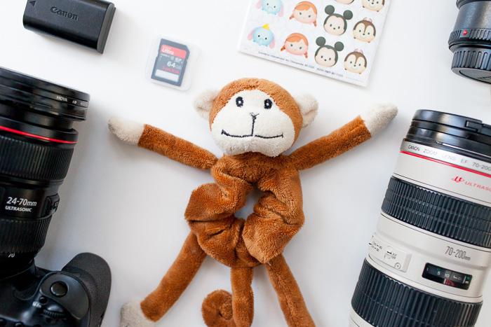shutter hugger monkey for family photography