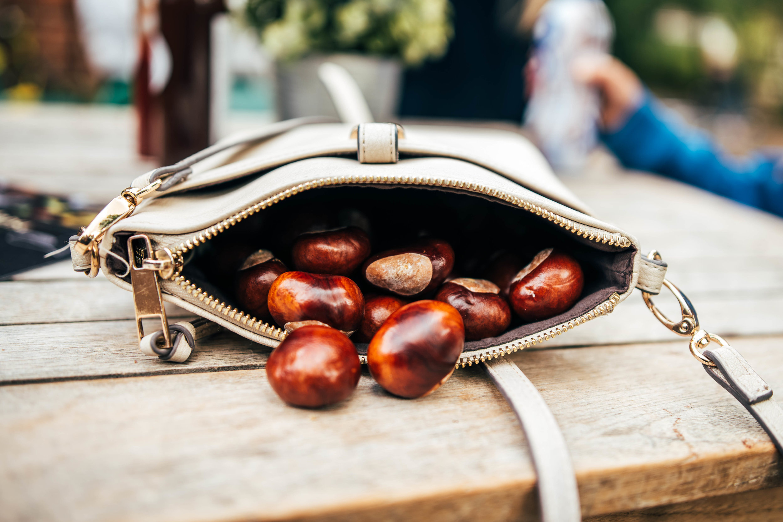 Conkers spill from an open bag Essex UK Documentary Photographer