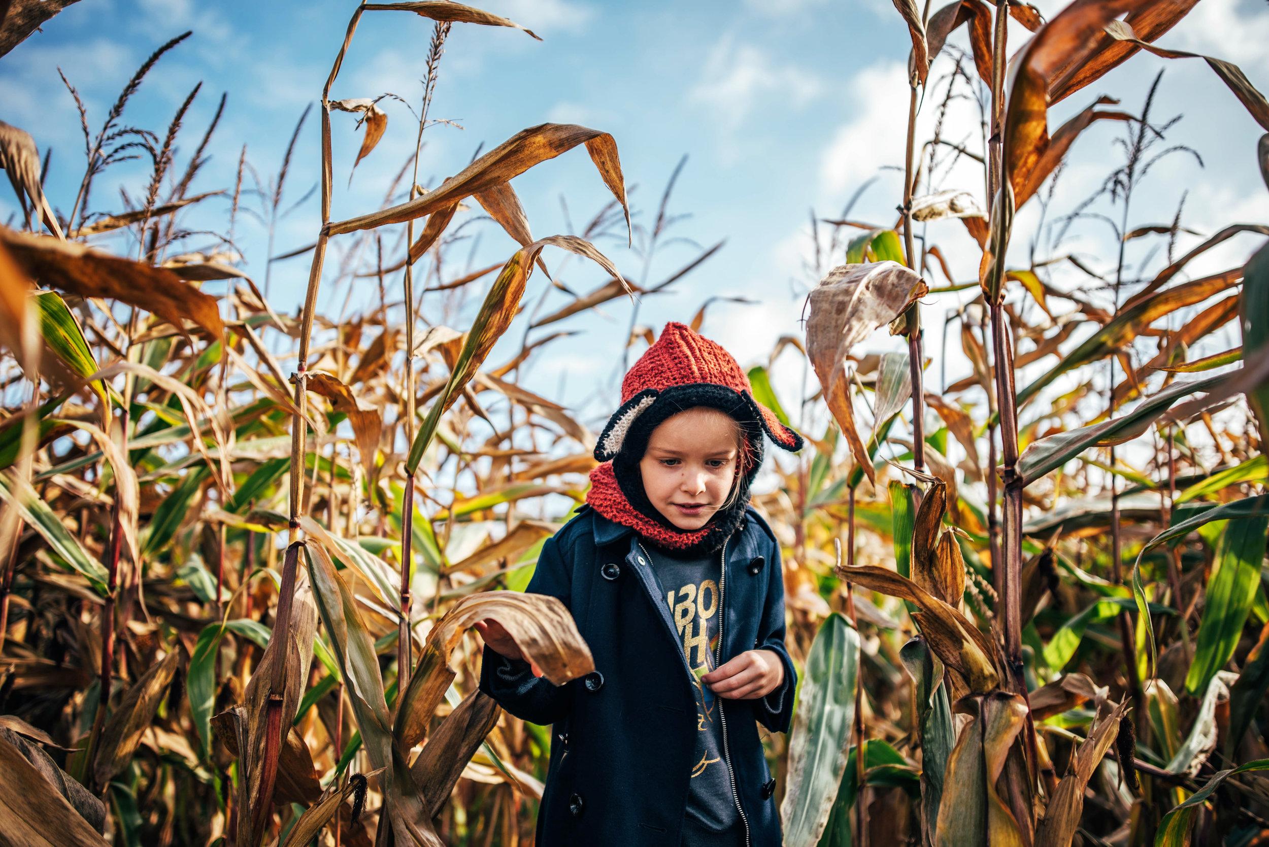 Little Girl in Fox Hat in Corn Maze Essex UK Documentary Portrait Photographer