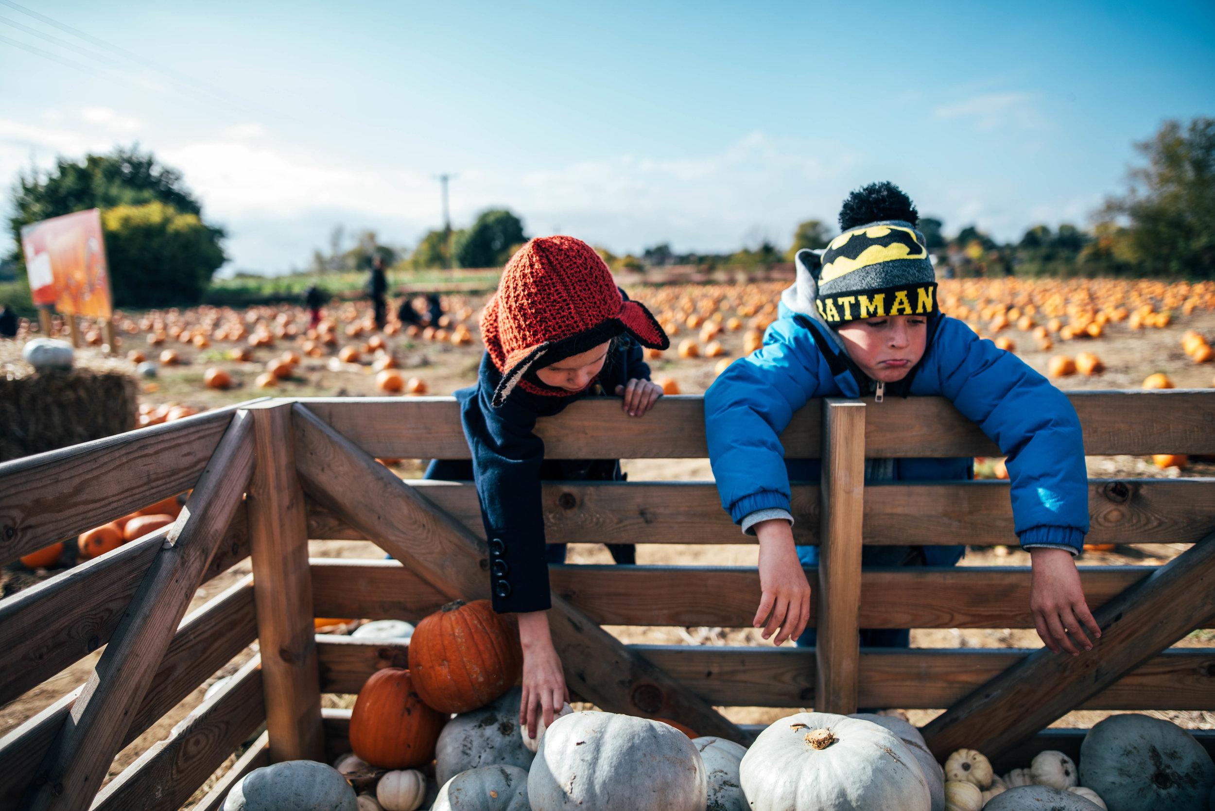 Two kids hang on Pumpkin crate Essex UK Documentary Portrait Photographer