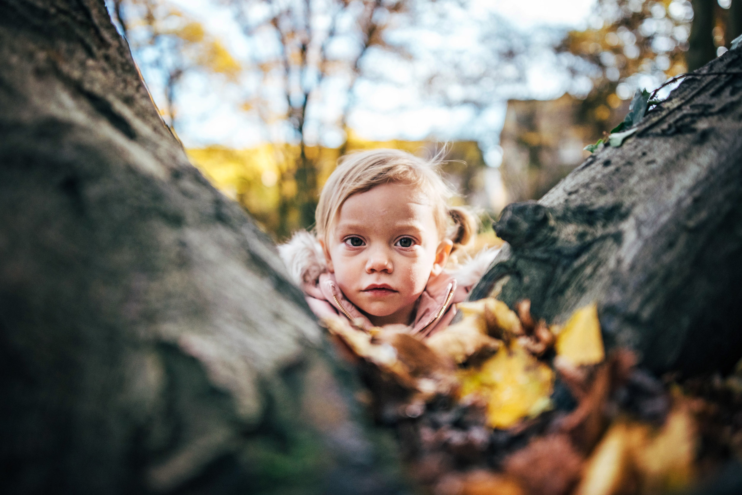 little girl by a tree in autumn essex uk documentary childhood lifestyle family photographerw