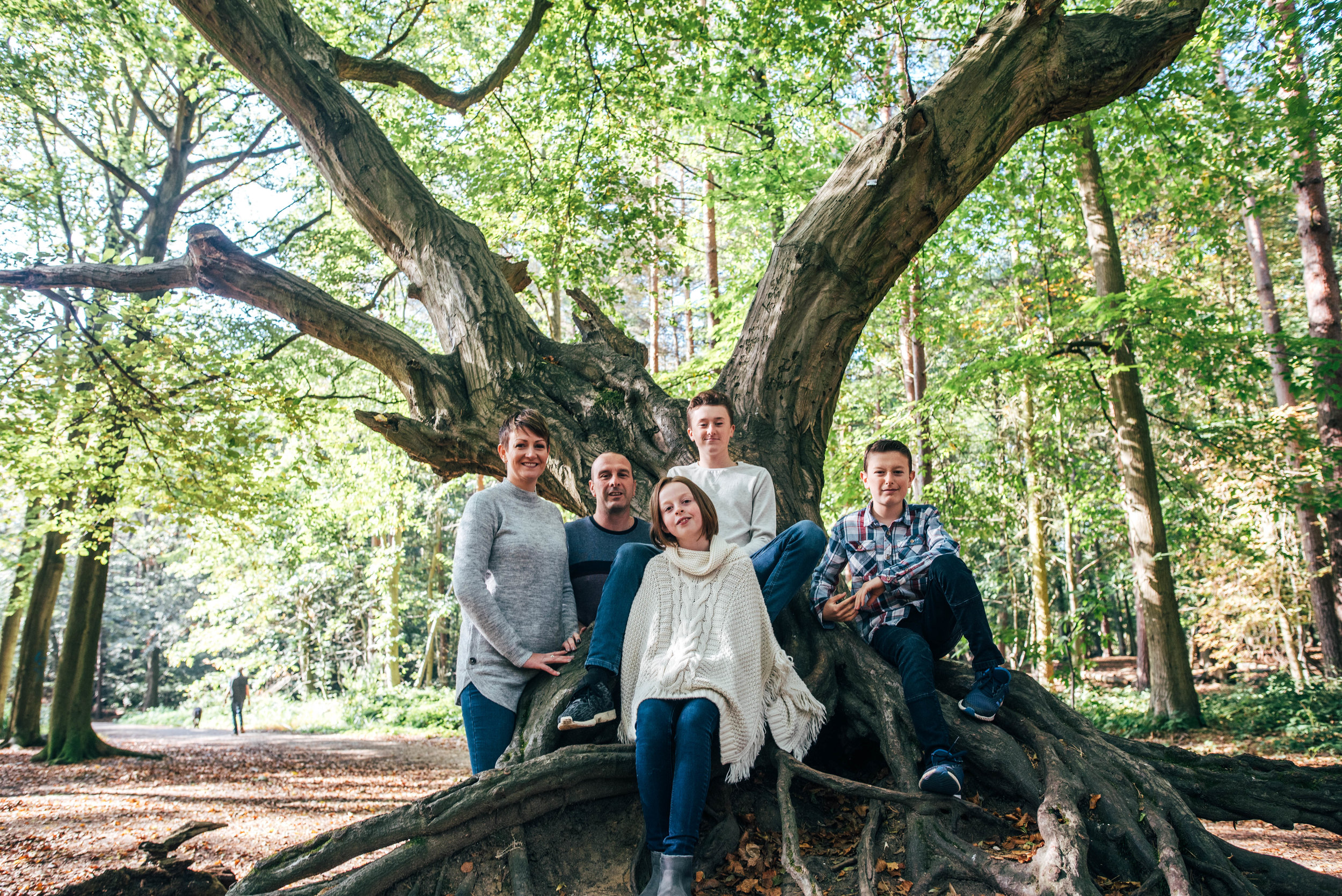 Family of Five sit in huge tree in forest Essex Documentary Family Portrait Photographer