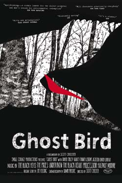 Ghostbird.jpg