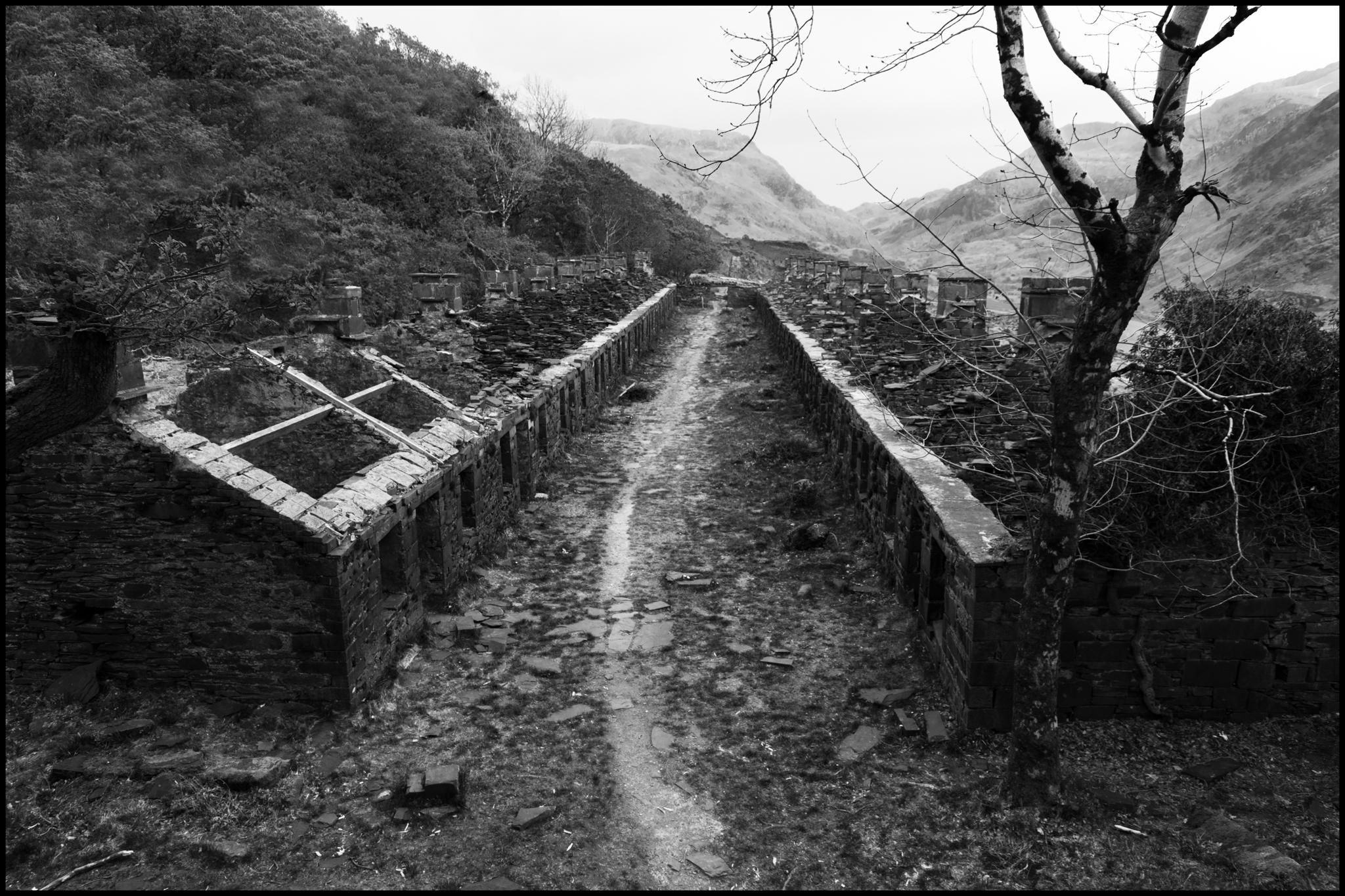 26 May 2019 - Miners row, Llanberis Wales