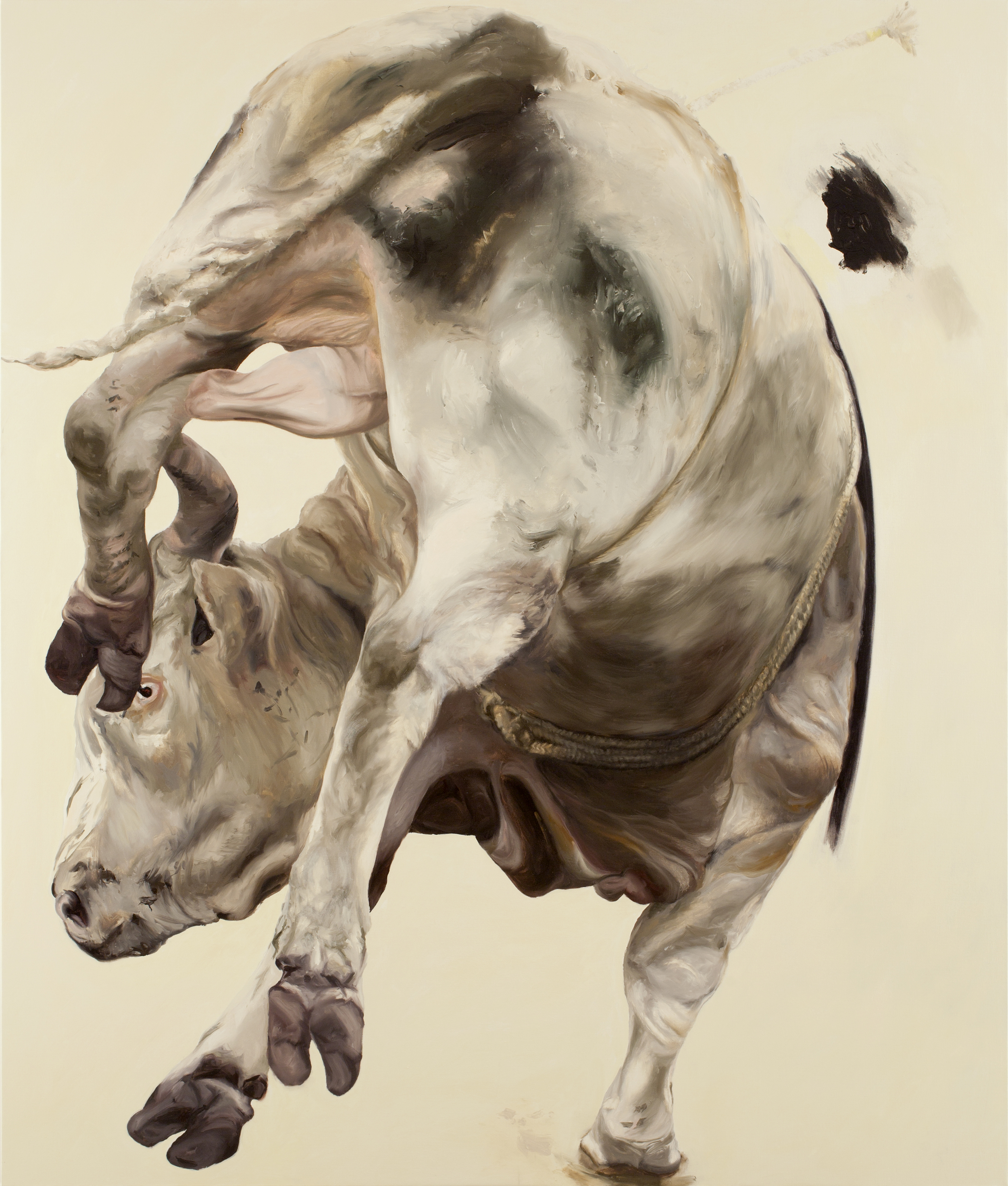 Pretzel Bull