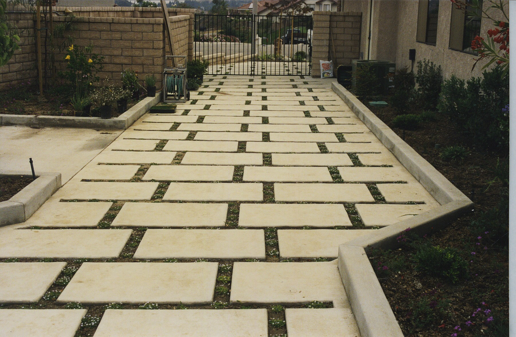 Cement and Grass Drive Way.jpg