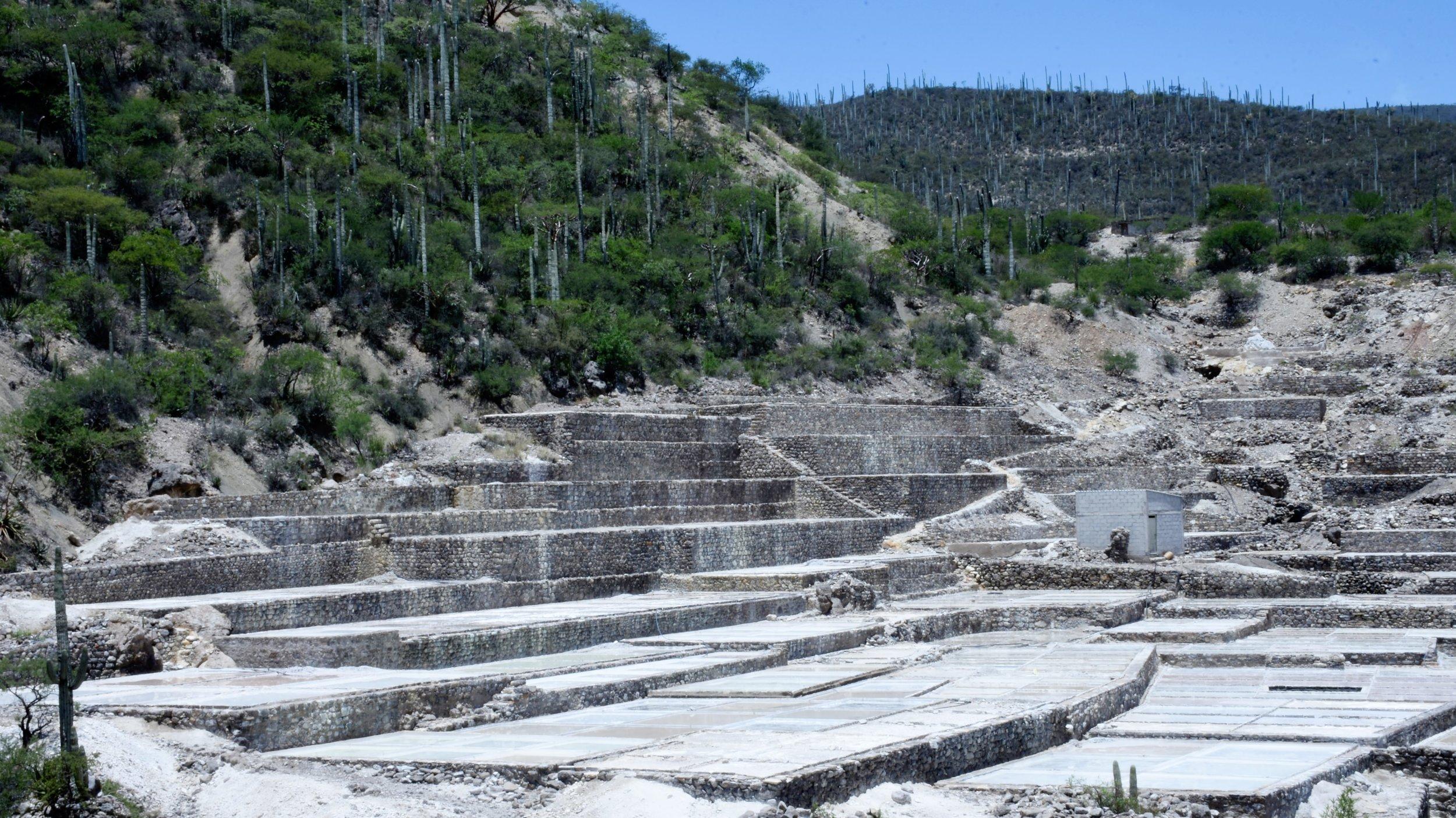 Salinas en Zapotitlán