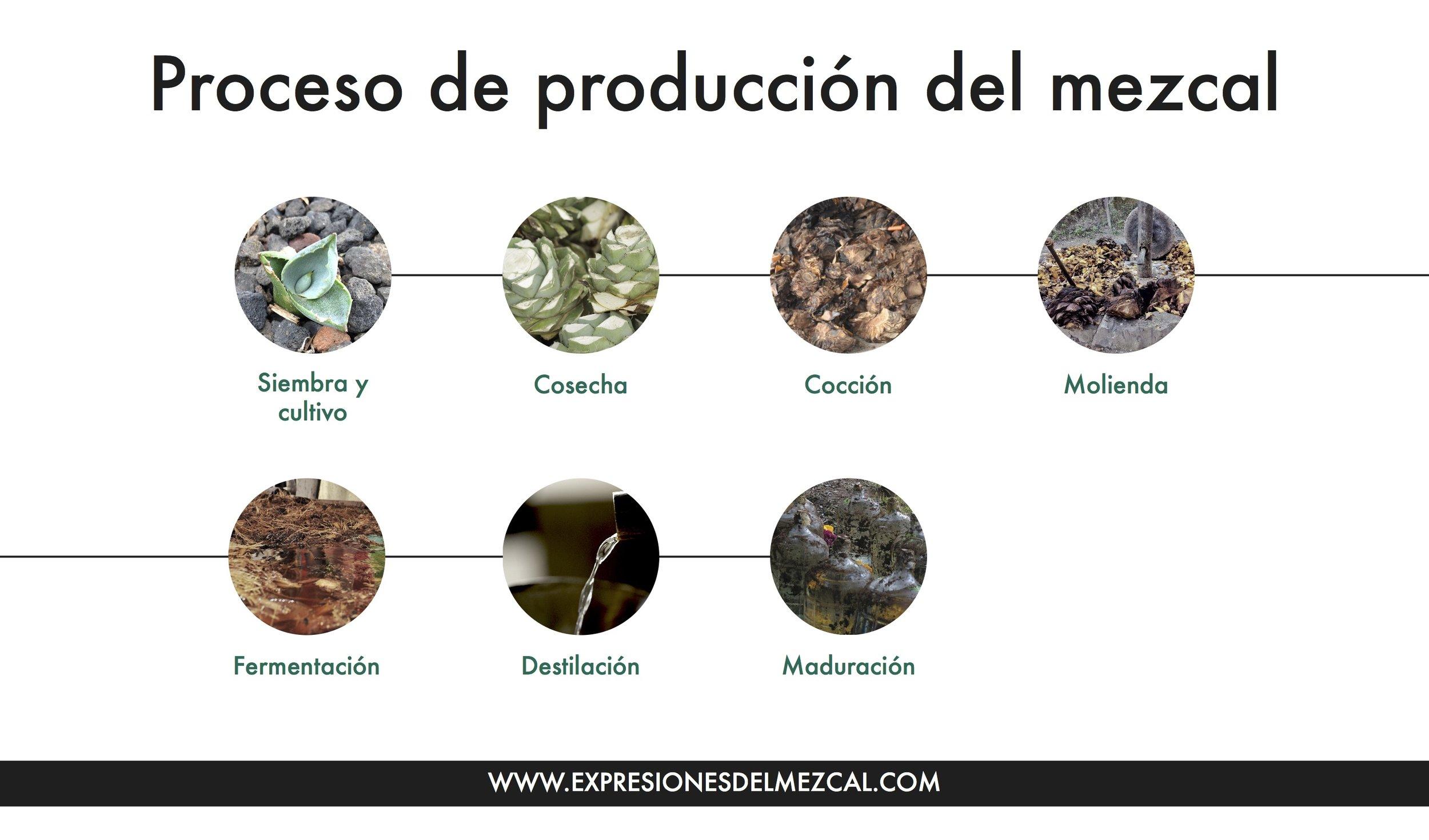 Proceso de producción del mezcal