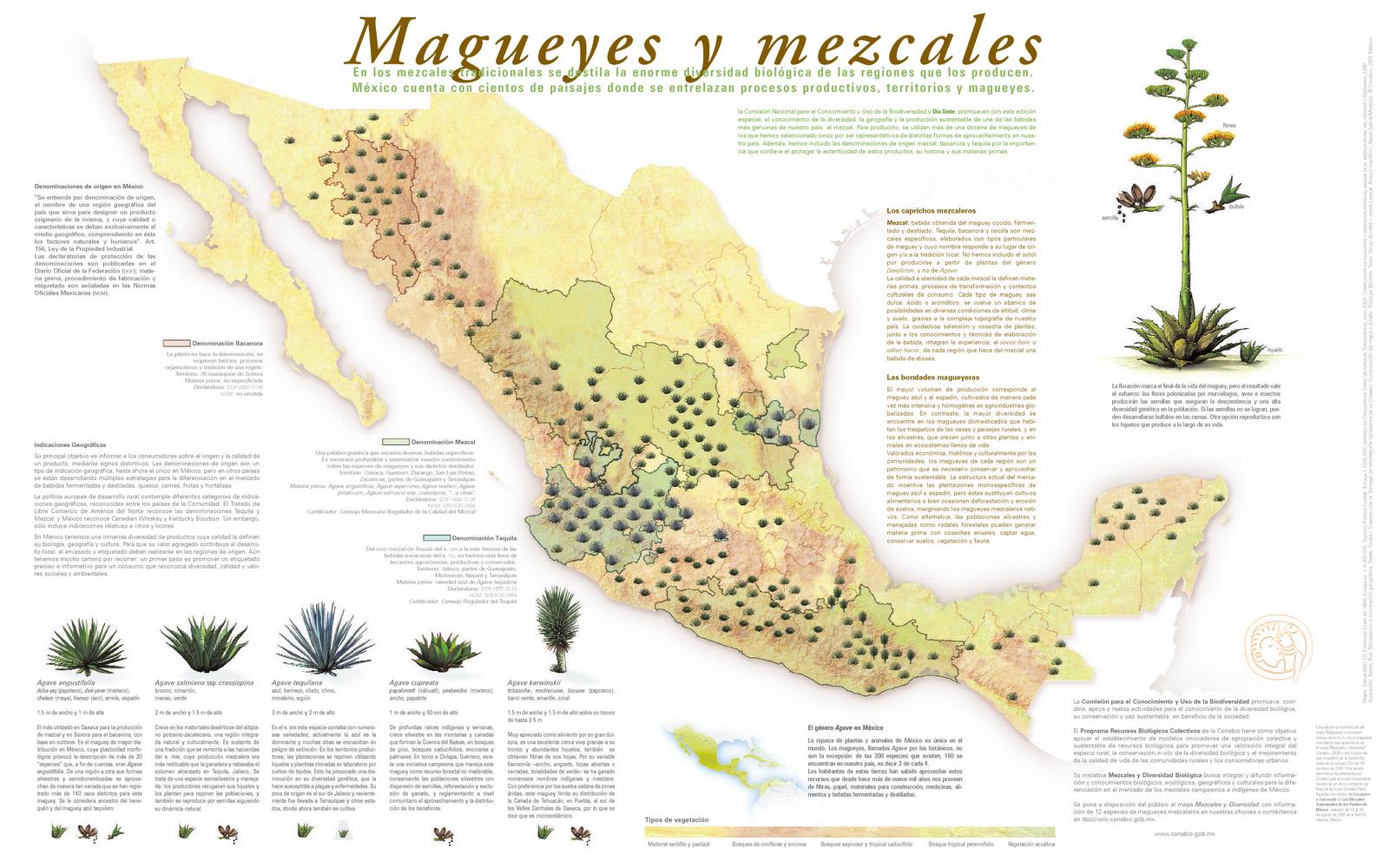 Mapa mezcales y diversidad CONABIO