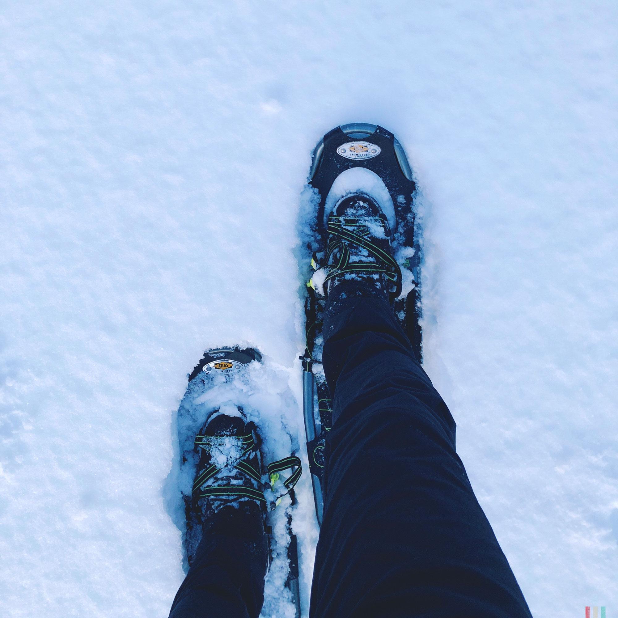 norwegen-senja-wandern-schneeschuhe.jpg