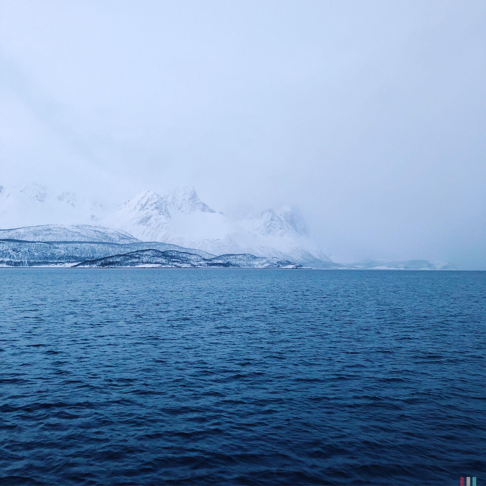 norwegen-tromso-segeltour-kvaunangen-im-nebel.JPG