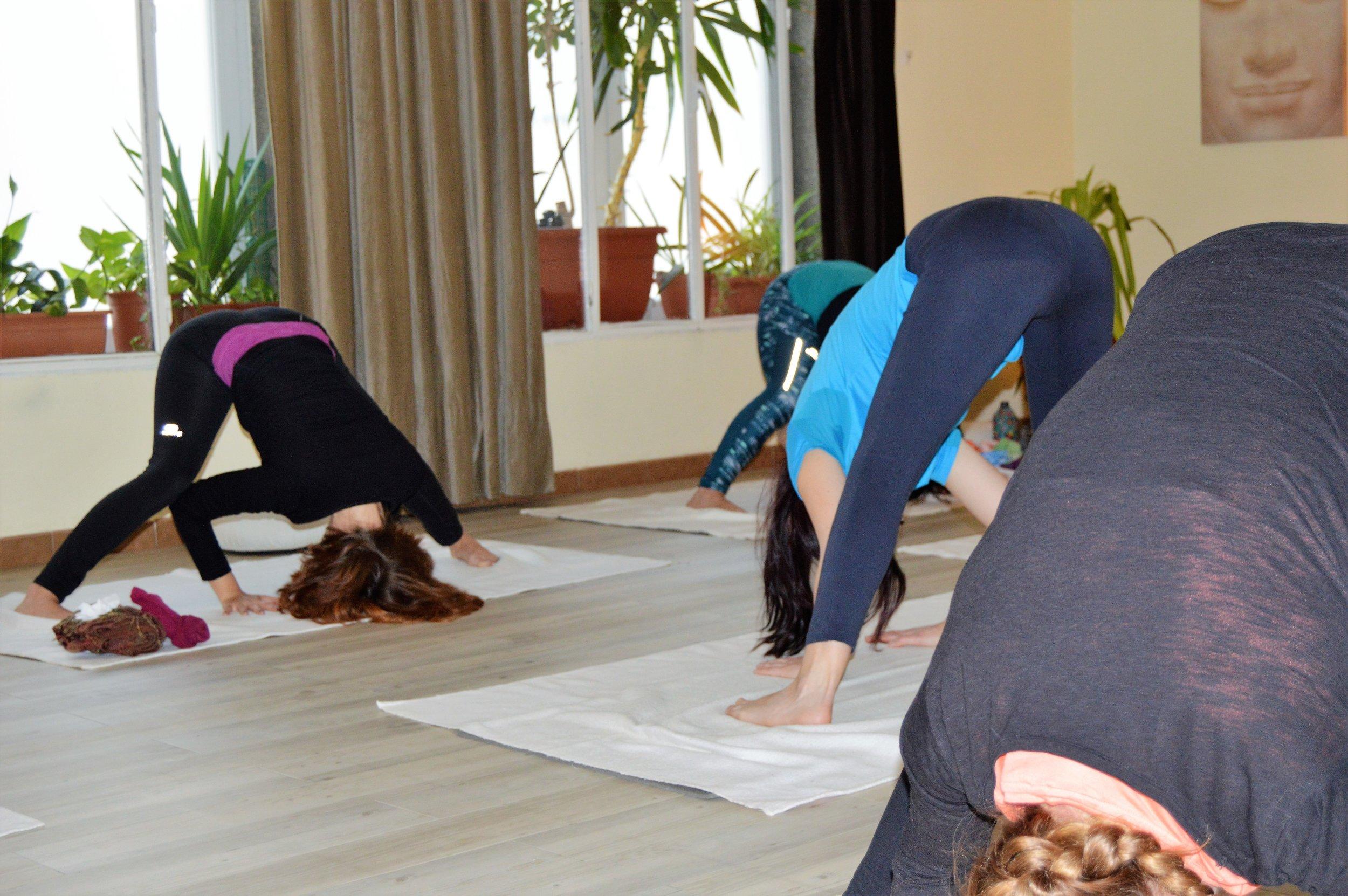 asana-yoga-les-corts.JPG