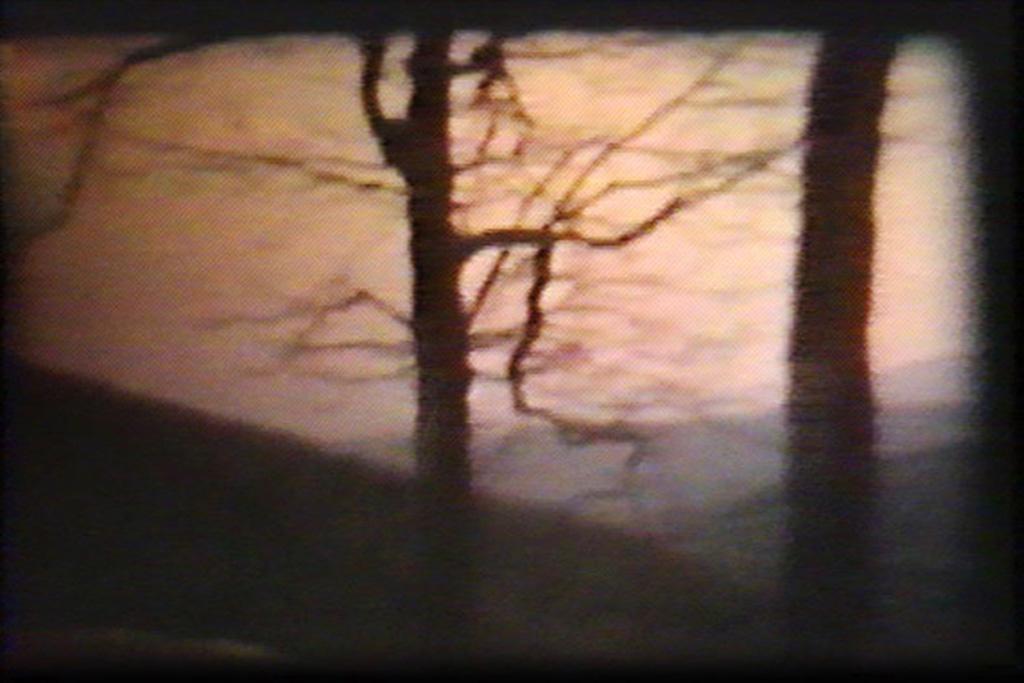 home (movies); blue ridge