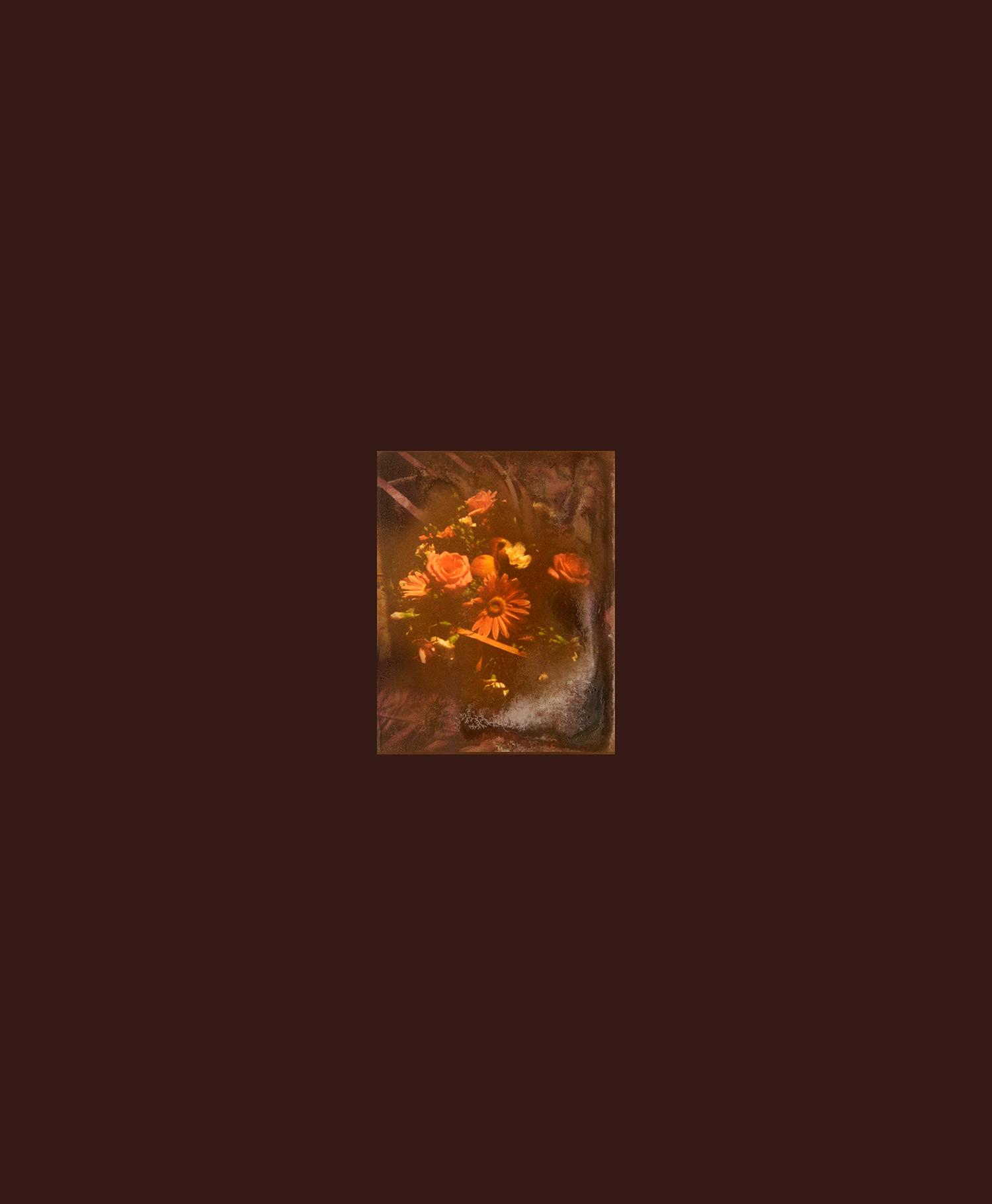 Anonymous (flooded album); raw umber