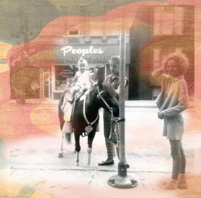 Stella, pony