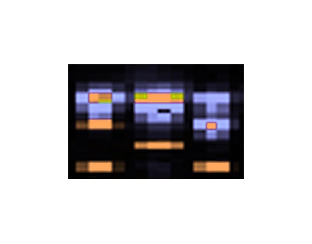 Family of Three, #1 Micro-Satellite Markers, Chromosome #22