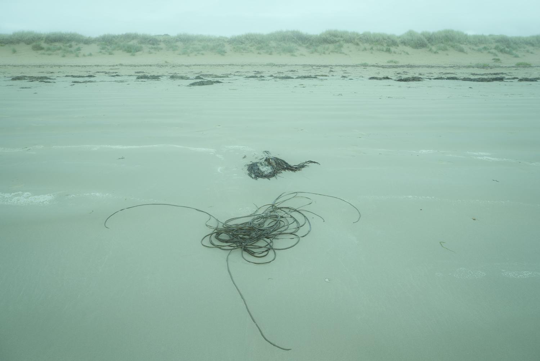 Blue Tides, Spiral