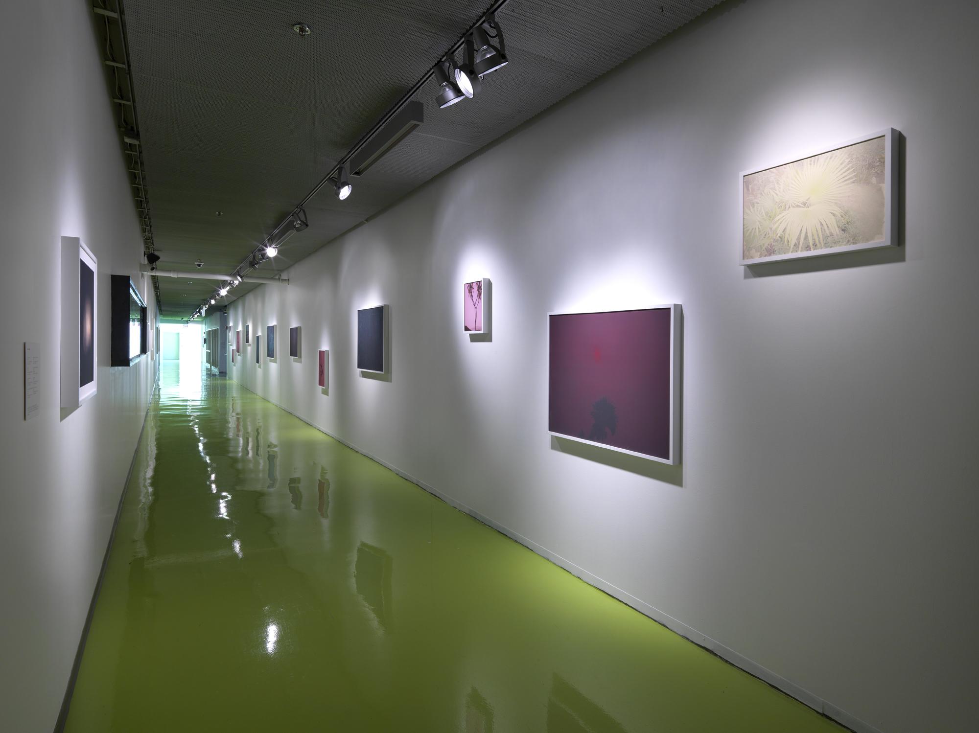Paradise Wavering   Hyde Park Art Center 2016