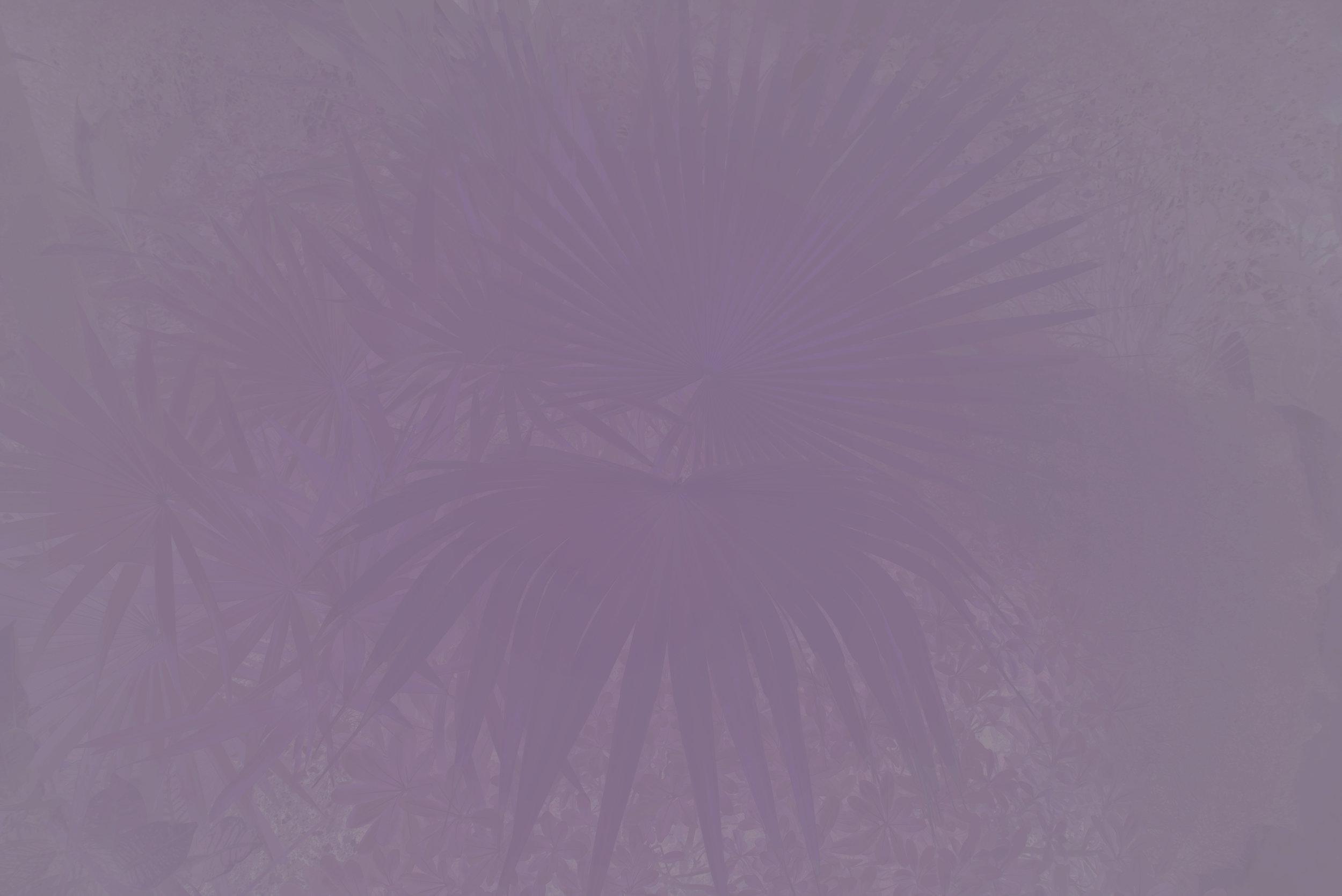 Violet Afterimage