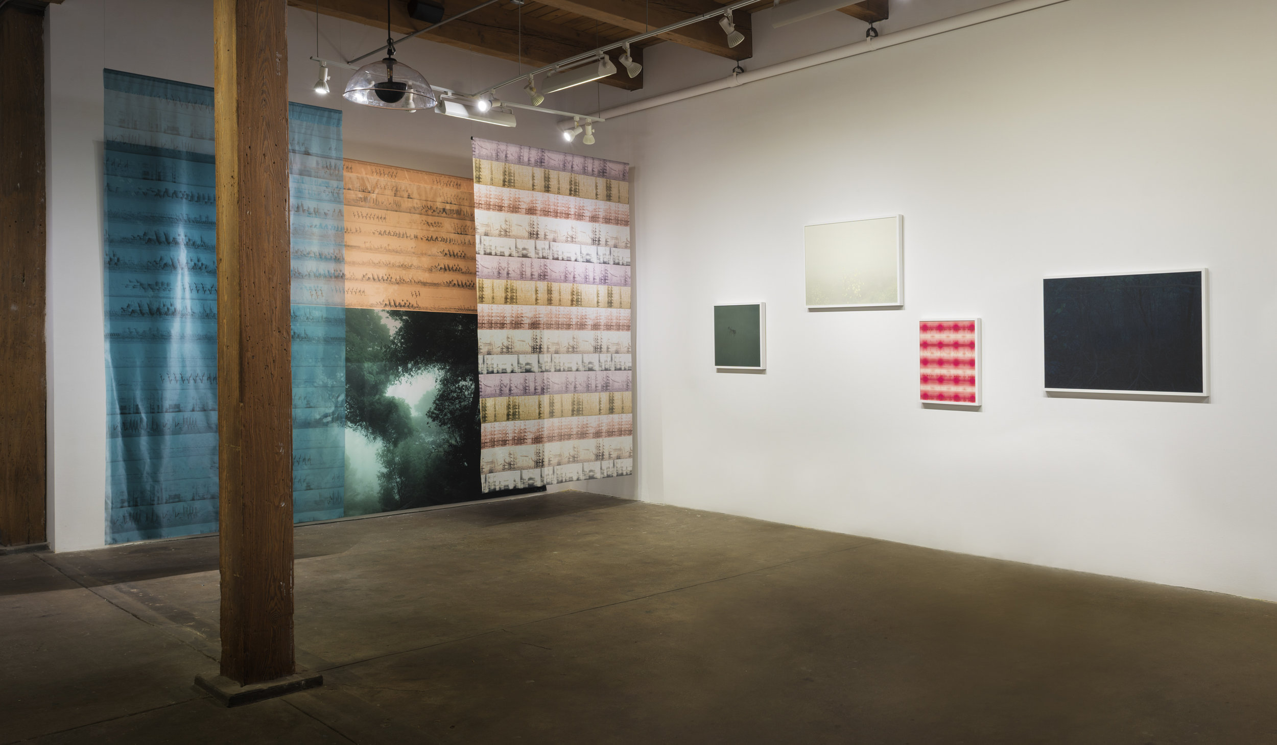 """Carrie Secrist Gallery 2018   Truth Claim / Green Daze, Migration (Nene, and Indigo Bunting, male and female)   Solvent prints on silk and shear fabric / 10' x 16' x 6'   Green Daze    (10' x 16')    Indigo Bunting female, calls    (40"""" x 12' )    Nene, mating calls    (10' x 72"""")    Indigo Bunting male, calls    (10' x 60"""")     Tidal Haiku / Yellow Drift / Ciconia ciconia, White Stork (calls) / Mangroves      Parabolic Speaker Audio Installation    On any Given Night: migration season along the Mississippi     Flyway (audio installation) Sound editing by Alex Drosen     Audio File / Loop 20 minutes    Recordings from 1950- 2016 by Arthur A. Allen, Gregory Budney, Martha Fischer, William W.H. Gunn, Justin Hite, Peter Keane, Geoffrey A. Keller, Bob McGuire, Steven R.Pantle, Thomas G. Sandler, and Gerrit Vyn  All Courtesy The Cornell Lab of Ornithology"""