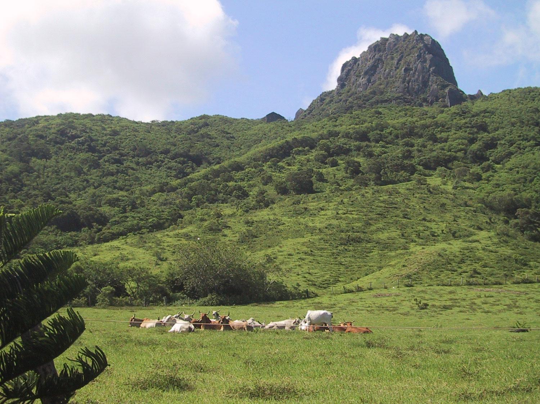 mountain-kenting,-Taiwan-01.jpg