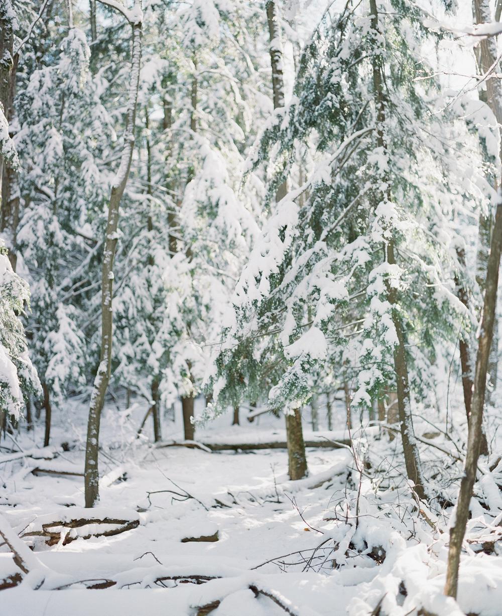 winter-engagement-photos-wausau-002.jpg