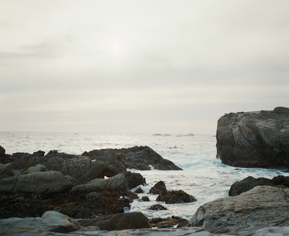 Point_Lobos_CA_Portraits_019.jpg