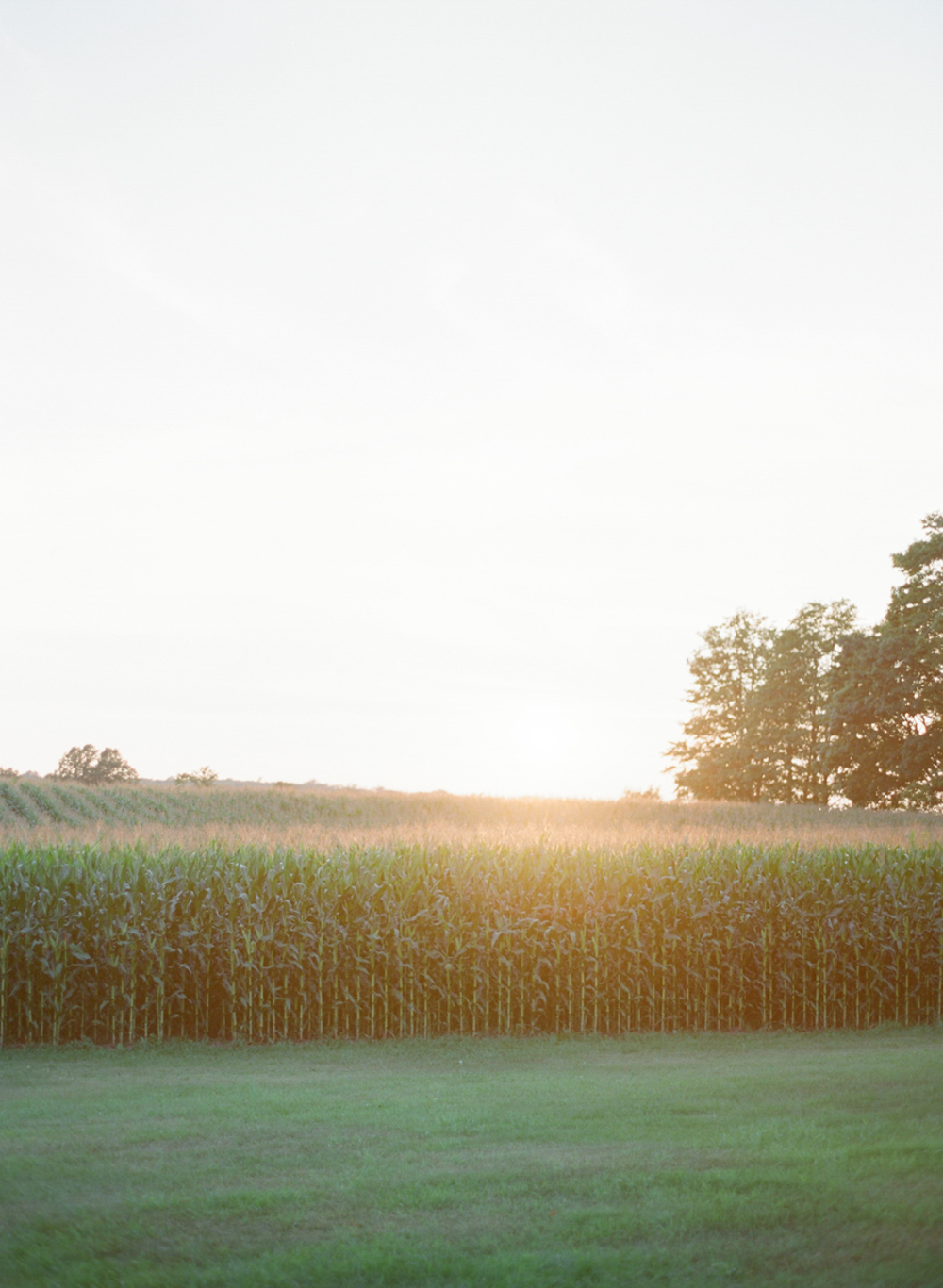 About_Thyme_Farm_Door_County_Wedding_047.jpg