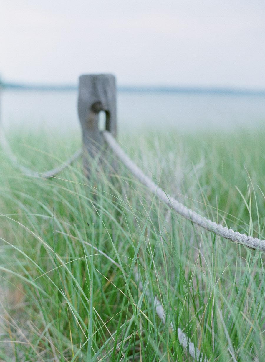 about-thyme-farm-wedding-door county-40.jpg