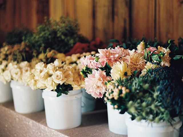 la+petite+bloom-1.jpg