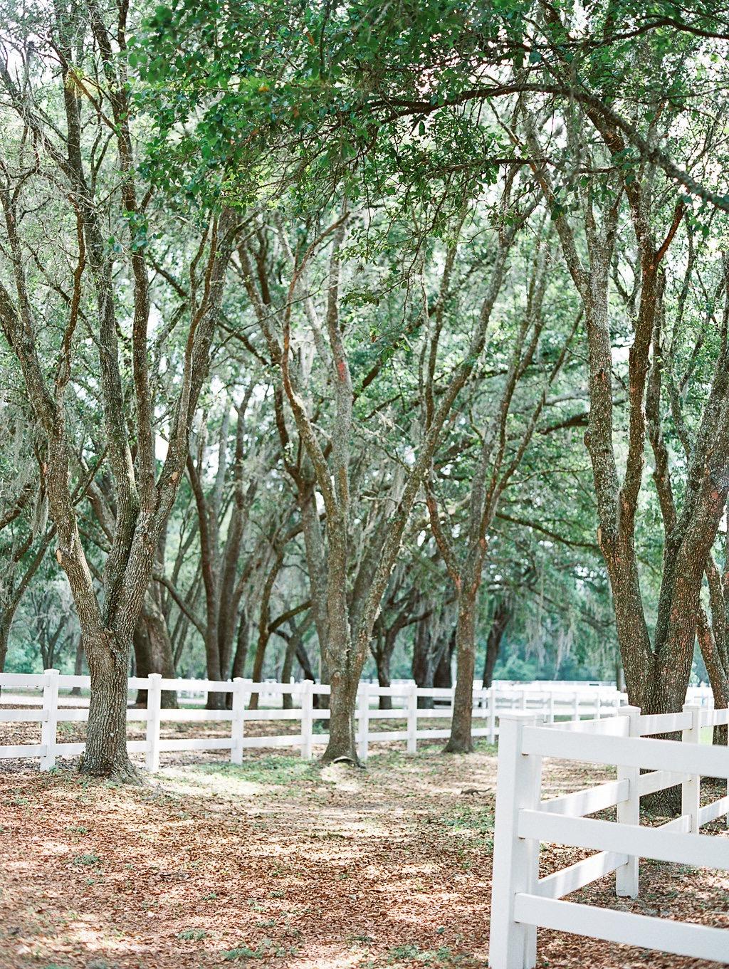 Bloom_Florida-1021.jpg