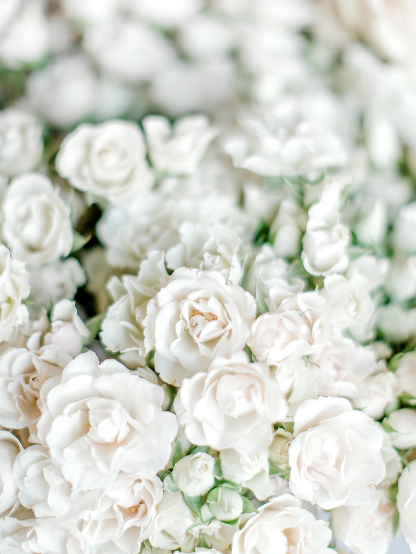 la+petite+bloom+lunaloft-25.jpg
