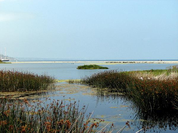 malibu-lagoon-5-28-14-thumb-600x450-74730.jpg