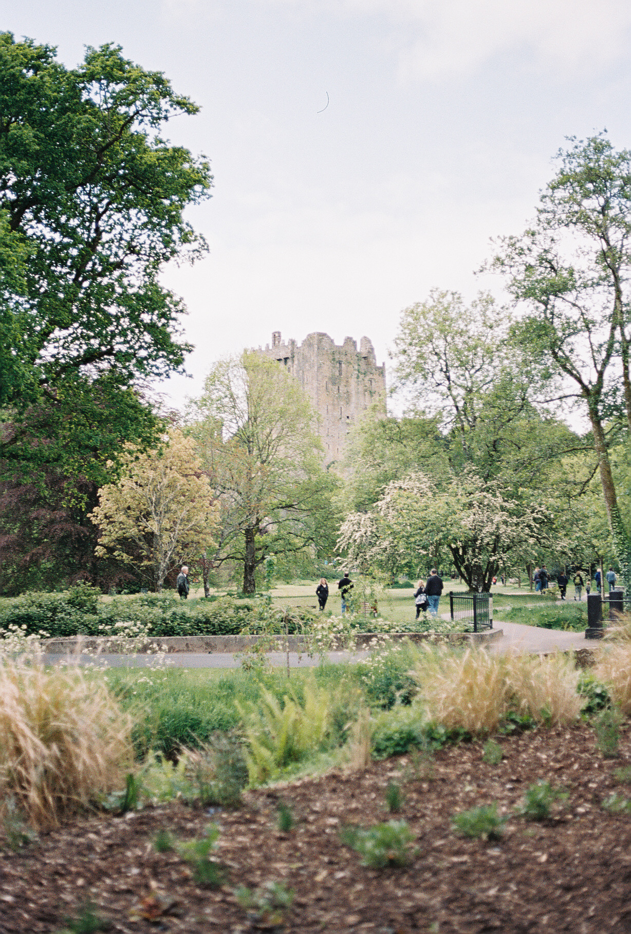 blarney-castle-european-honeymoon