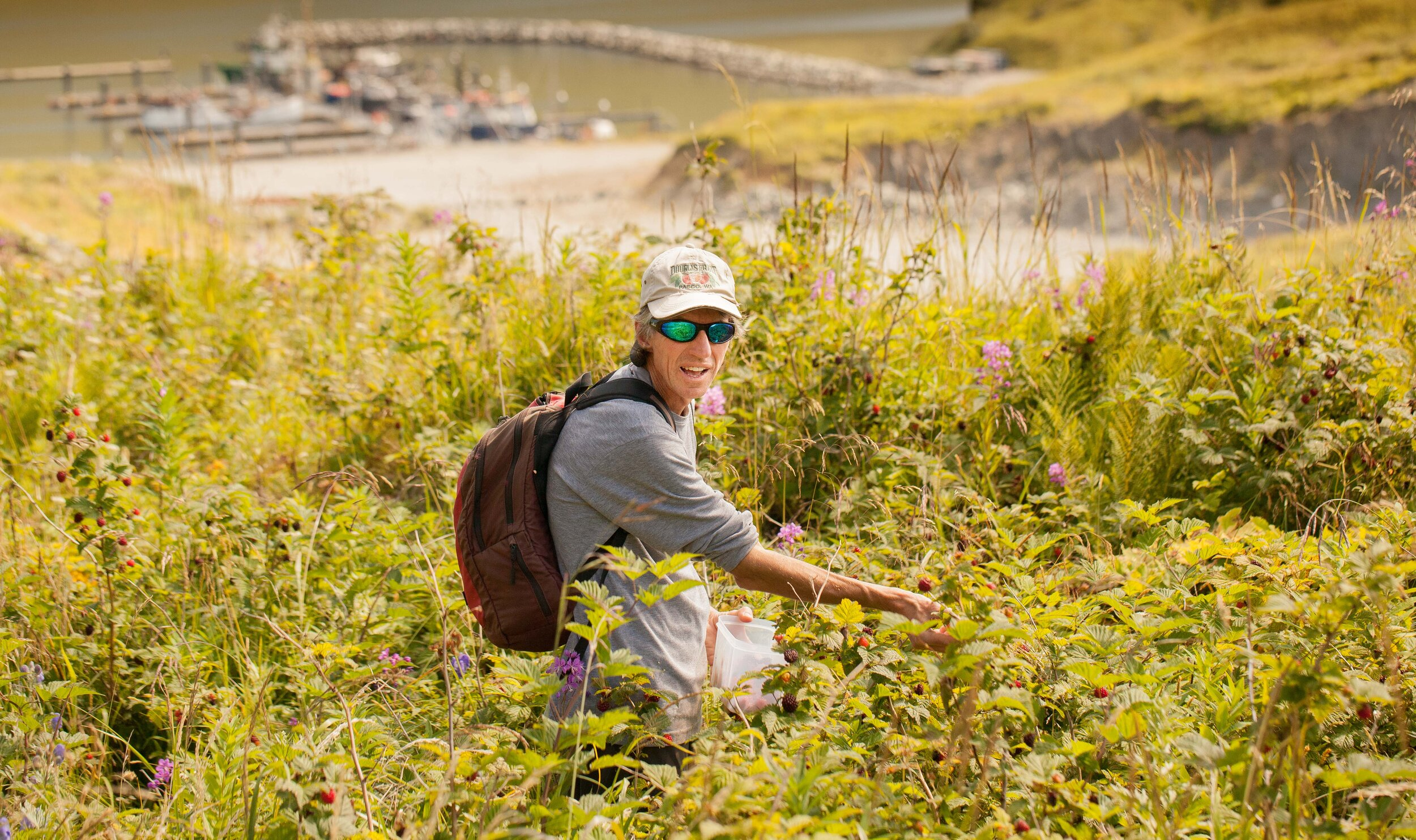 Douglas picking salmonberries. We caught the last few days of summer, adding fresh picked blueberries and salmon berries to our breakfasts.