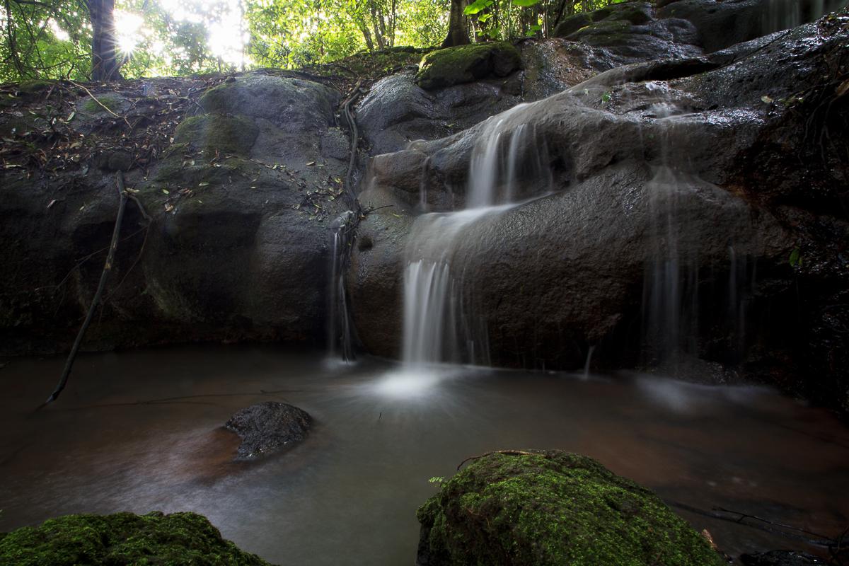 nature-2.jpg
