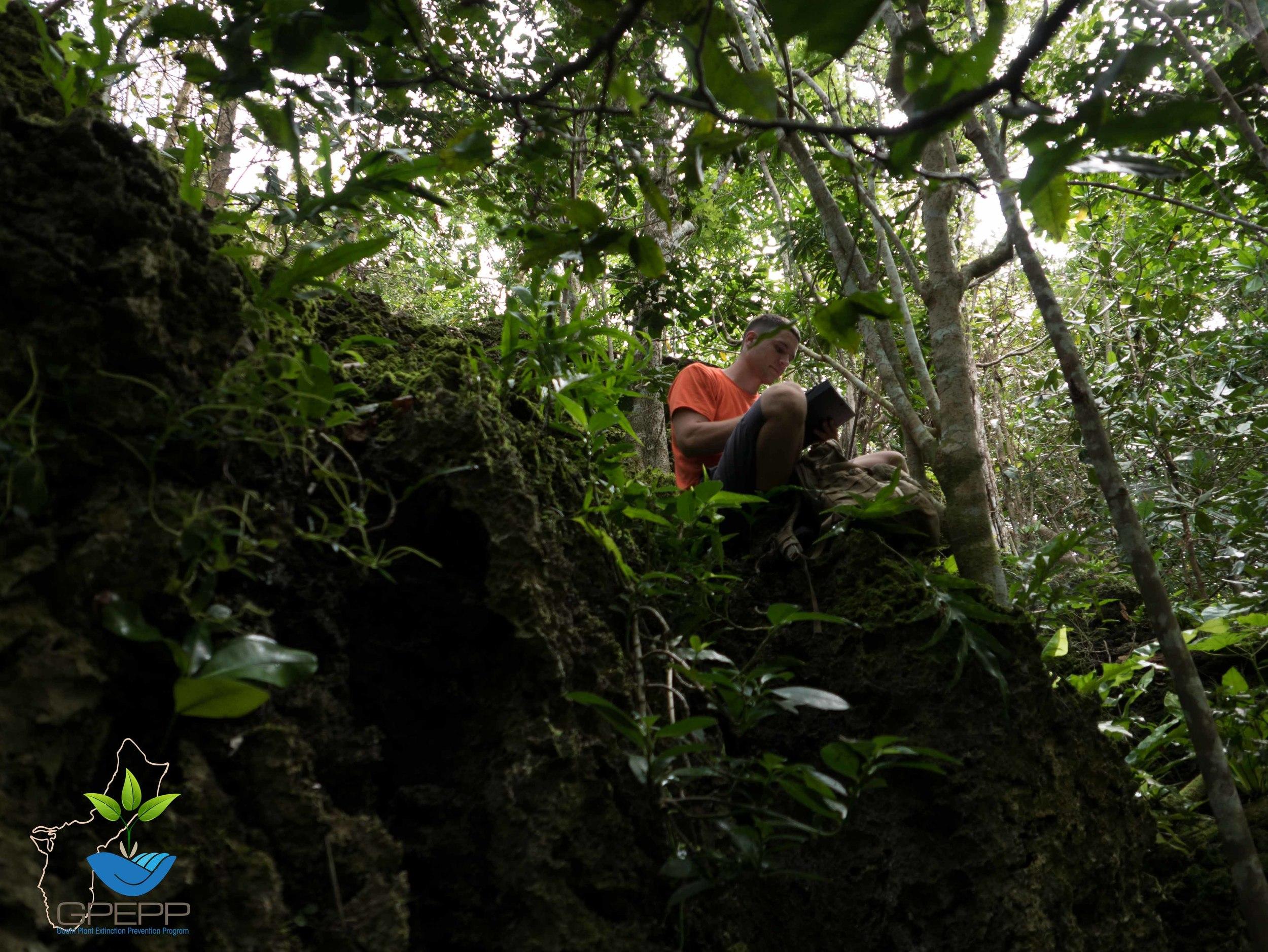 Mario recording rare plant species data
