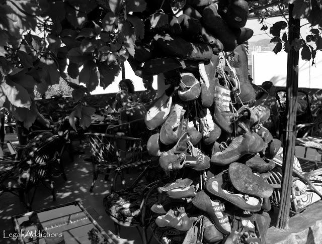 shoe+tree+crop.jpg