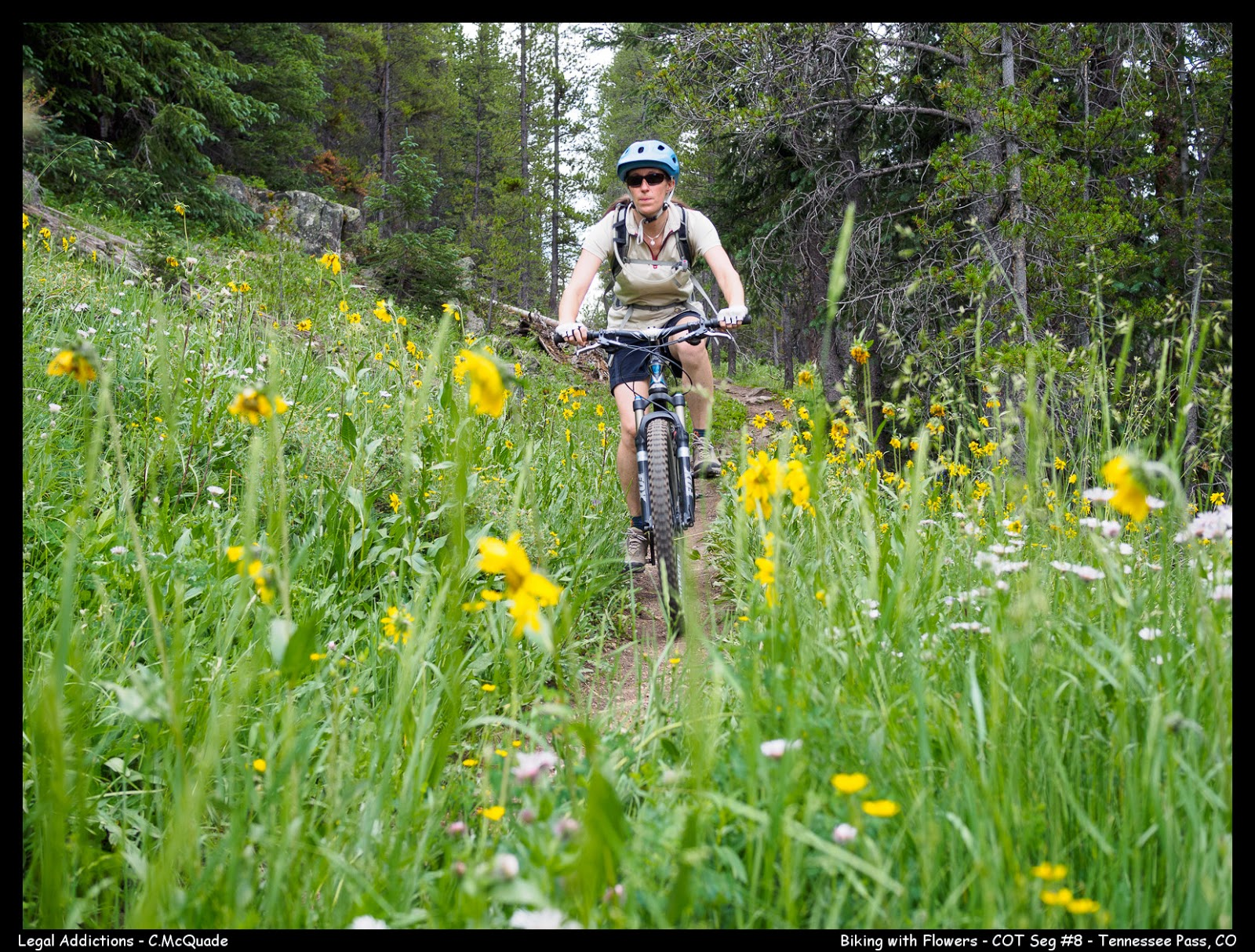 biking+with+flowers-20144702.jpg