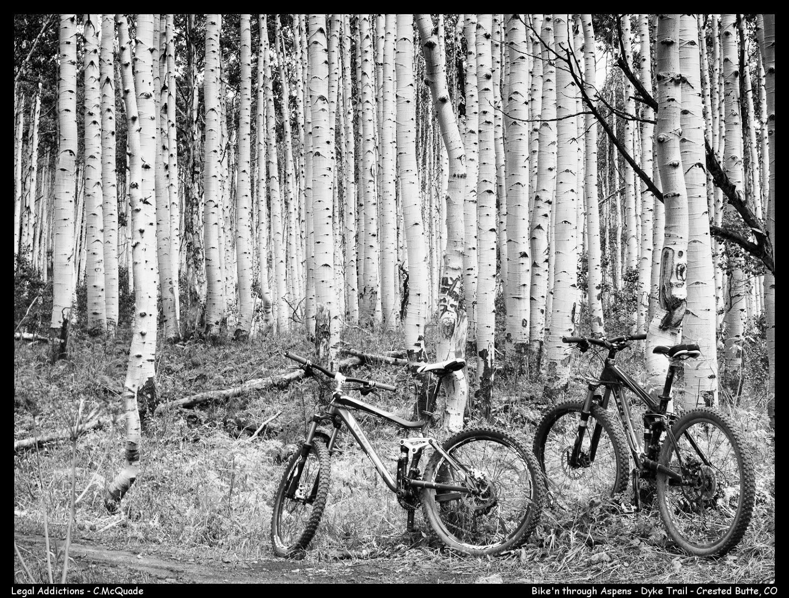 bikes%2Band%2Baspens-.jpg