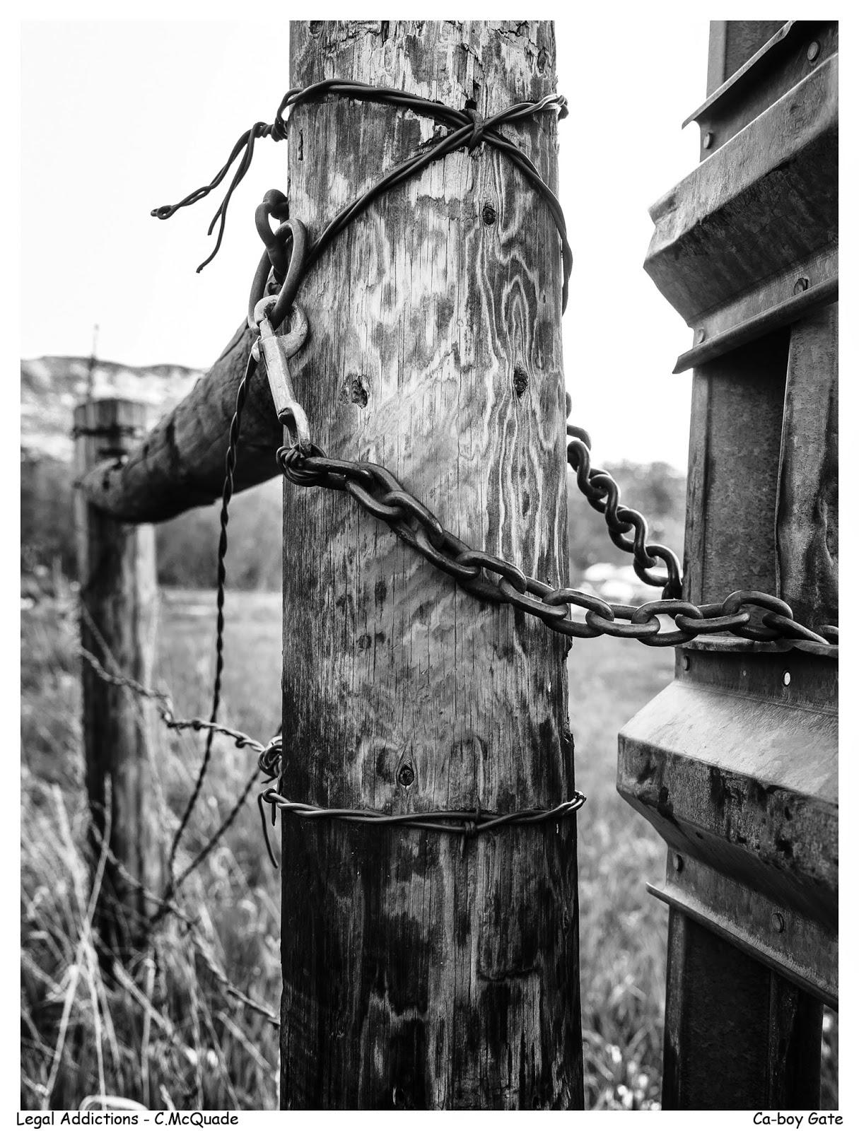 fence-20142652.jpg