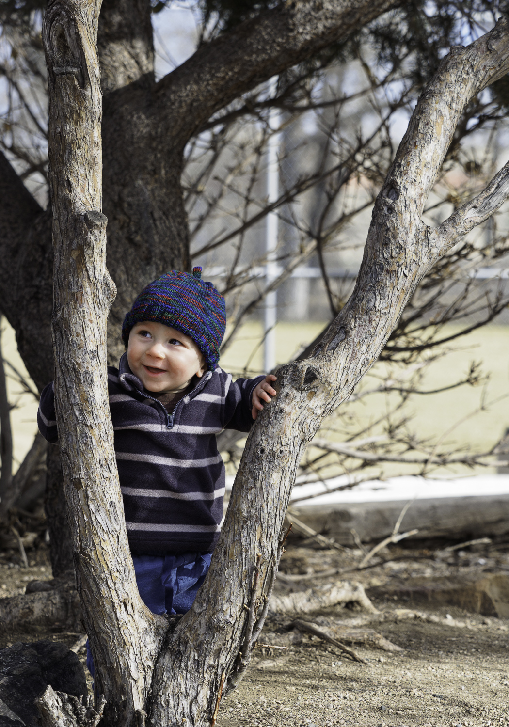 Happy in the Trees