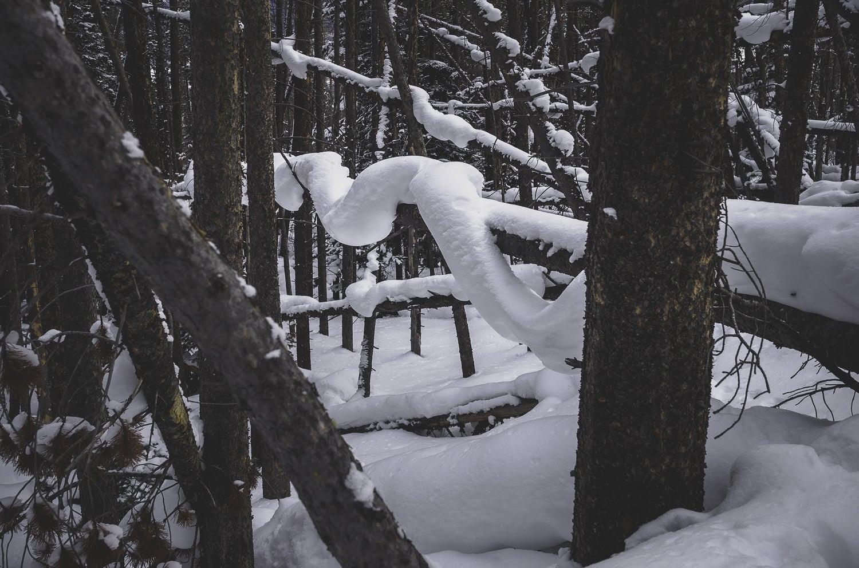 Tensile Strength - Snow Bonding at its best