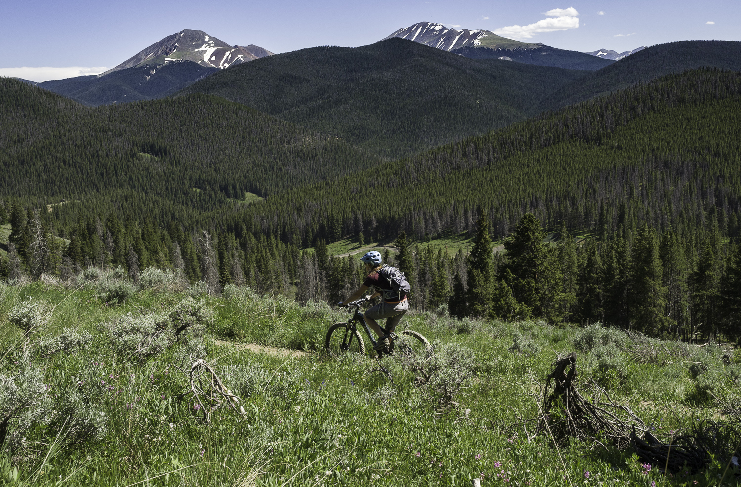 One of Summit Counties Best Downhills - Colorado Trail: Segment 6