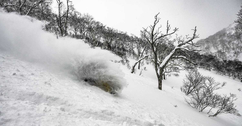 "Drew - ""Birch Mountain"""
