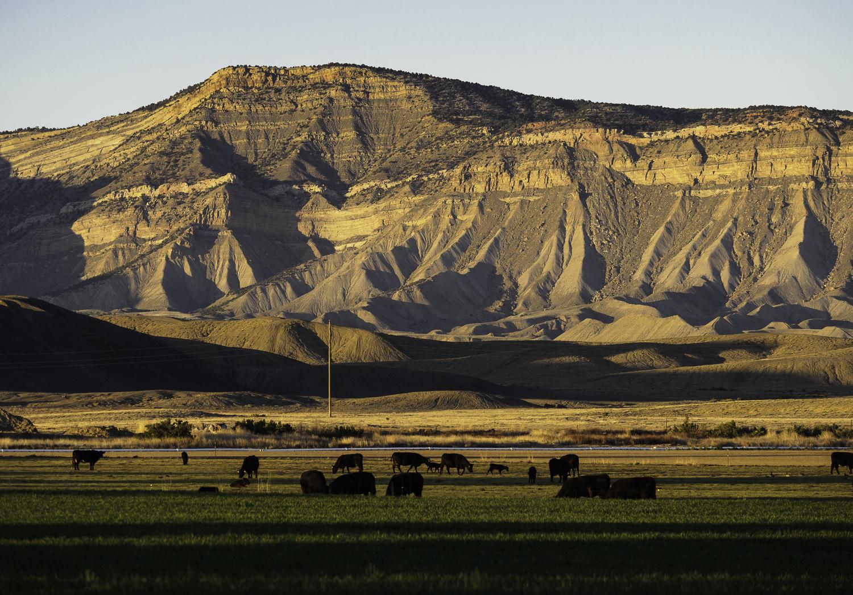 Sunset - Grand Junction, CO