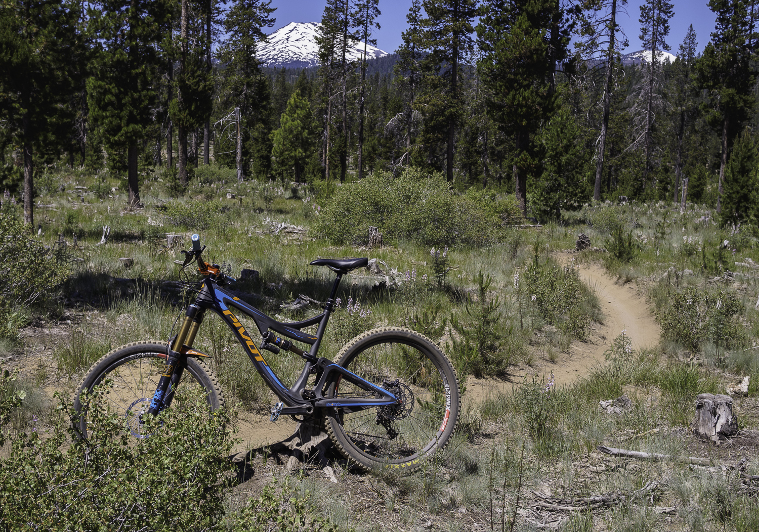 Mt Bachelor - Tiddlywinks Trail - Bend, OR