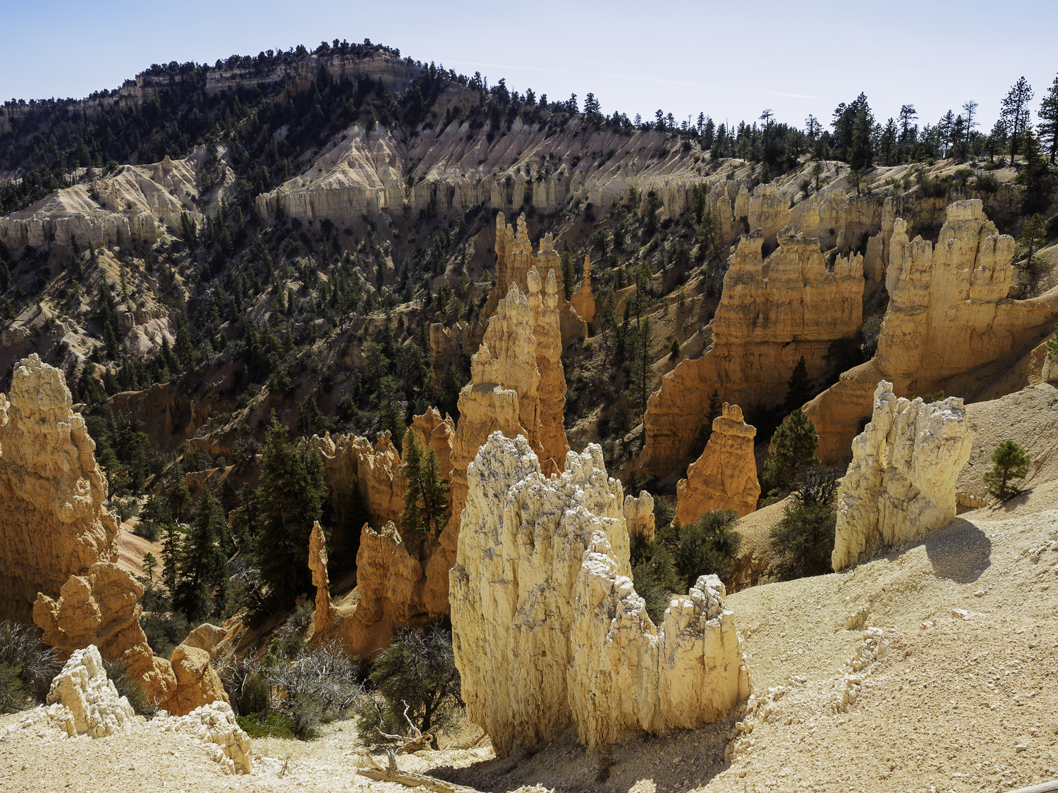 Fairyland - Bryce Canyon, UT